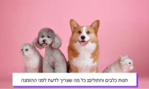 חנות לכלבים וחתולים